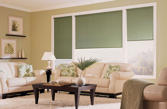 Green roller shades on living room windows