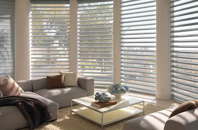 Sheer window treatments in the living room